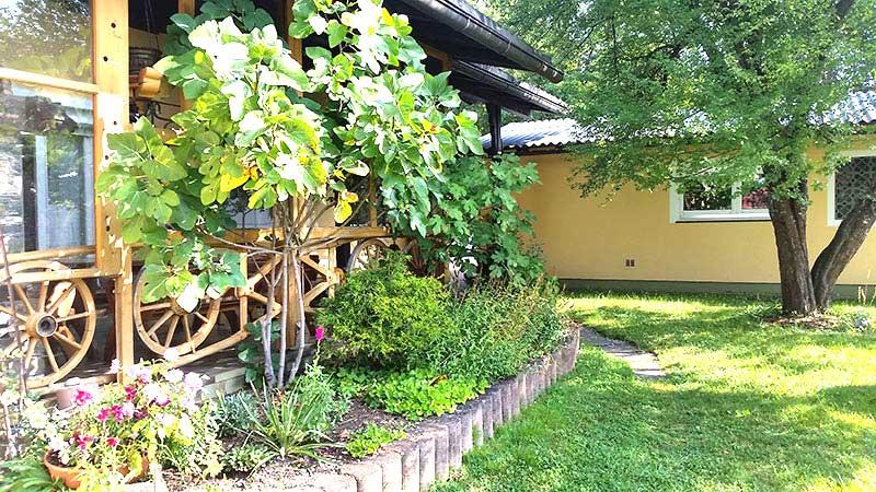 Außenbereich Weg in Richtung Garten